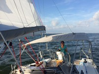 **yachting-direct** 764_delphia31-photo 1